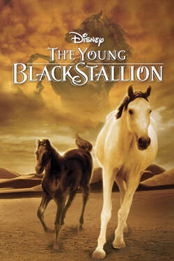Locandina The Young Black Stallion