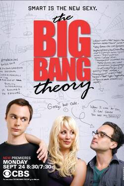 The Big Bang Theory (stagione 6)