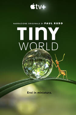 Locandina Tiny World