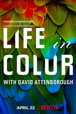 Locandina Life in Colour with David Attenborough