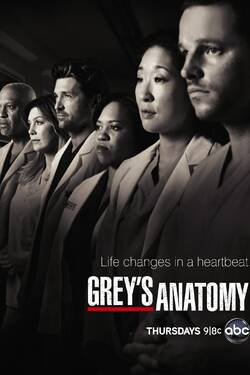 Grey's Anatomy (stagione 10)