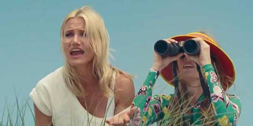 Clip Beach Stakeout - Tutte contro lui - The Other Woman