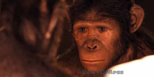 Spot TV - Dawn of the Planet of the Apes