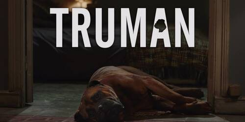 Trailer Truman di Cesc Gay