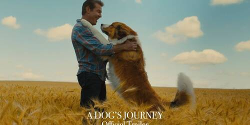 A Dog's Journey, Trailer del sequel di Qua la Zampa